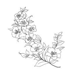 Dogwood Flower Outline Dogwood Flower Drawing Beeswax Flowers