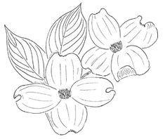 Dogwood Flower Outline Dogwood Flower Outline V It