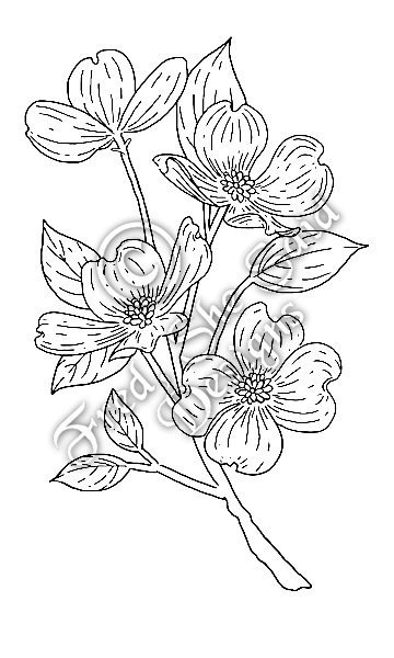 Dogwood Flower Outline Fred She Said Designs the Store Dogwood Branch Digi