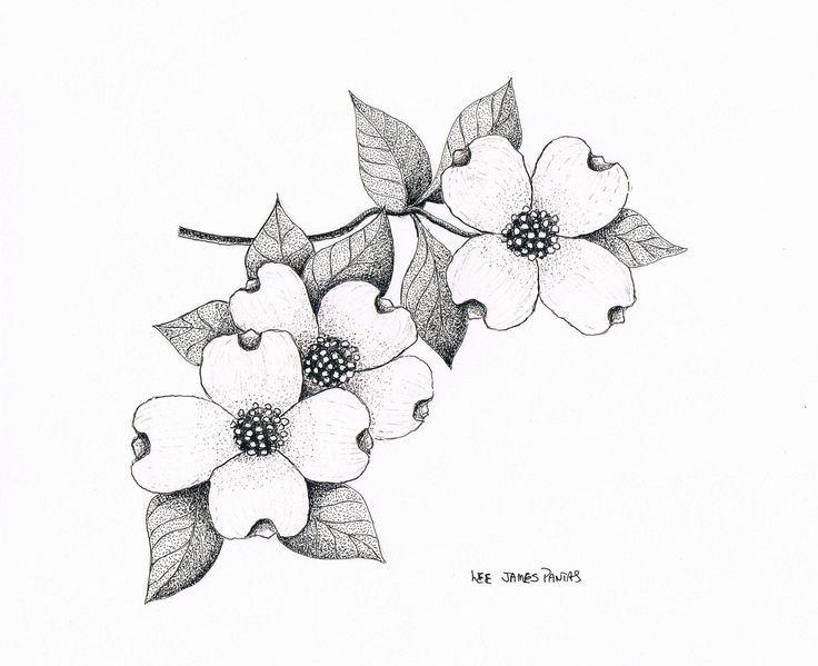 Dogwood Flower Outline I Want to A Tattoo Of Dogwood Flowers