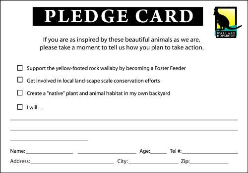 Donation Pledge Card Template Pledge Google Search F Pledge