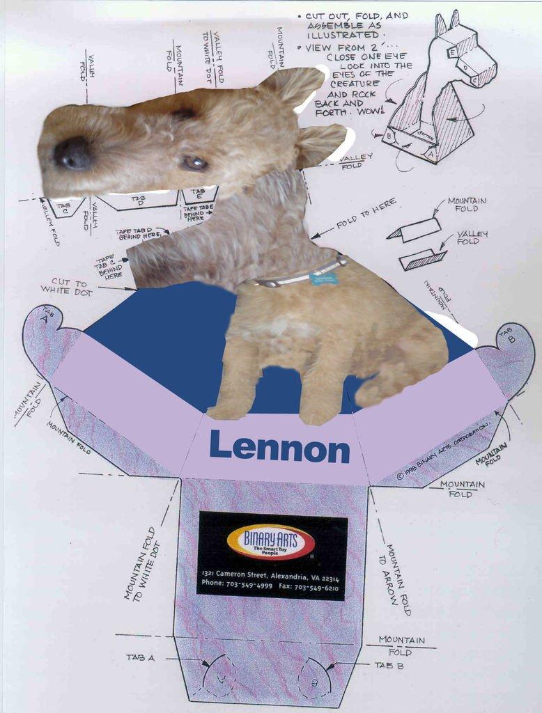 Dragon Illusion Printout Robot Dog Illusion
