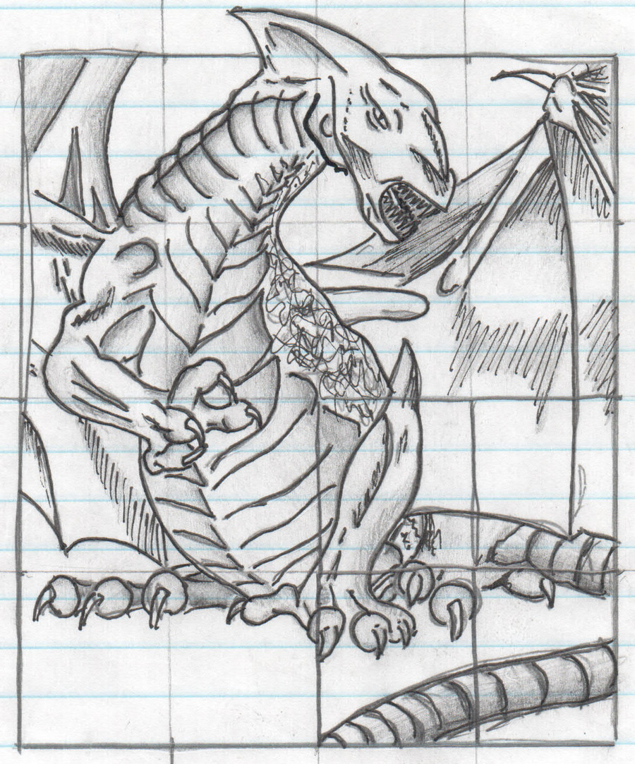 Dragon Tracing Pictures D and D Dragon Tracing by thecritique On Deviantart