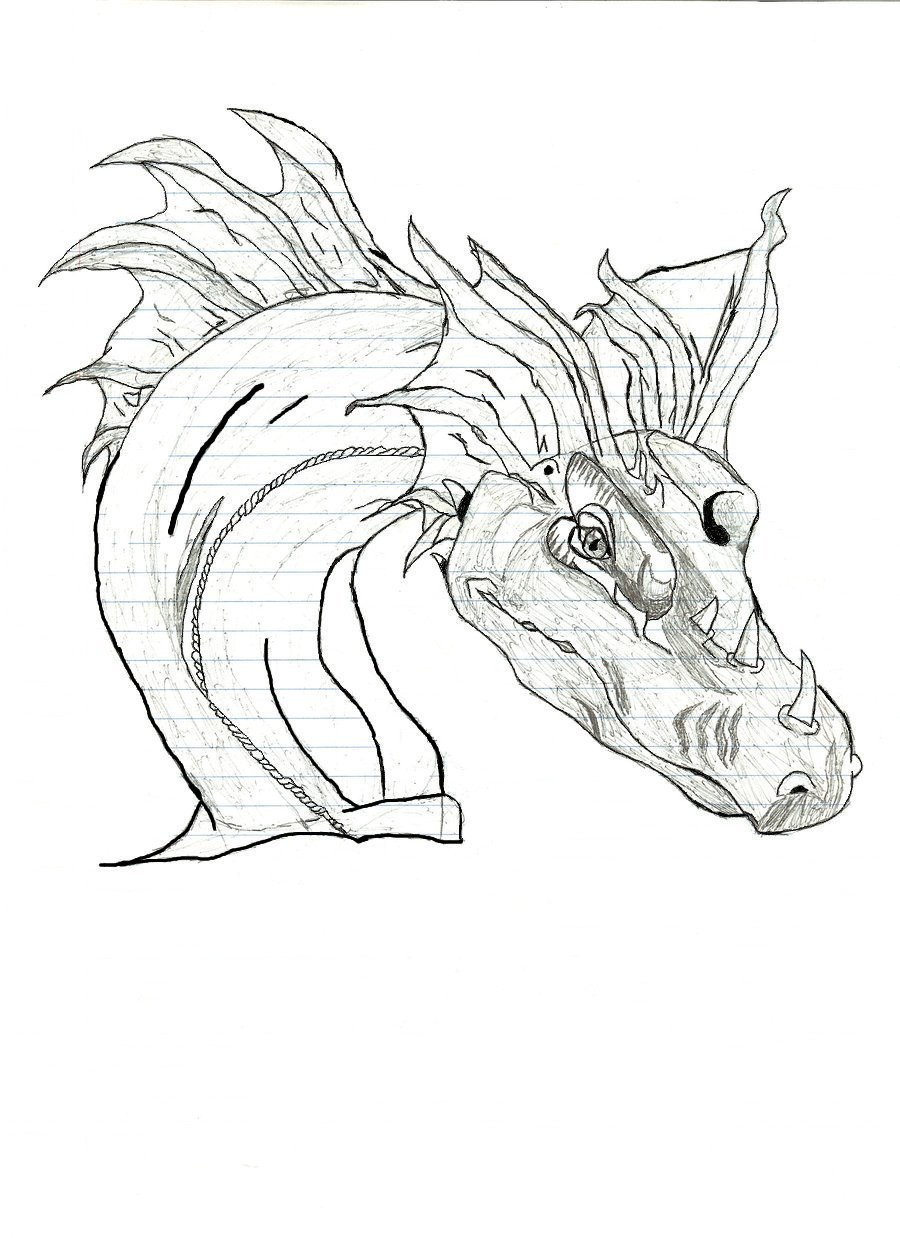 Dragon Tracing Pictures Dragon Trace by Maximus56 On Deviantart