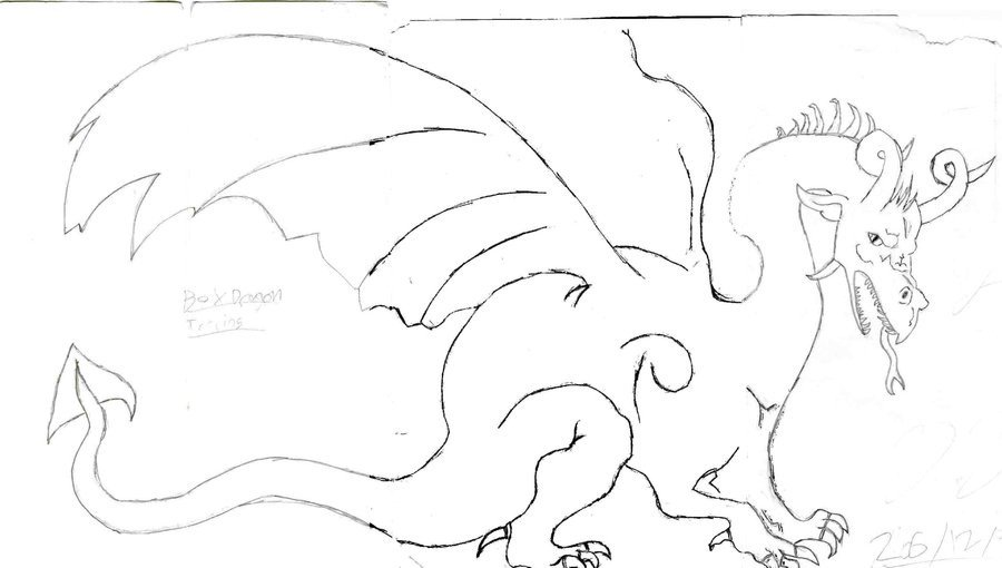 Dragon Tracing Pictures Dragon Tracing by Dravedragonheart On Deviantart