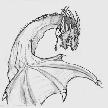 Dragon Tracing Pictures Oposites