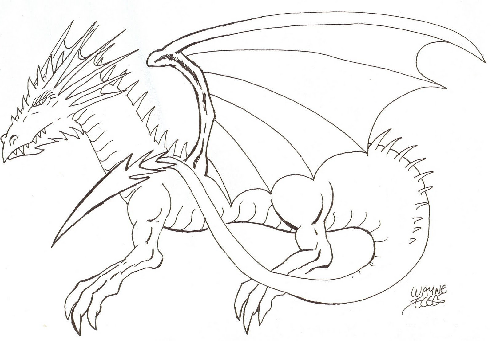 Dragon Tracing Pictures Wayne Tully Horror Art How to Draw A Dragon
