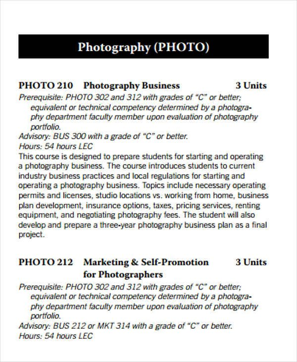 Drone Photography Business Plan 32 Free Business Plan Templates Word Pdf