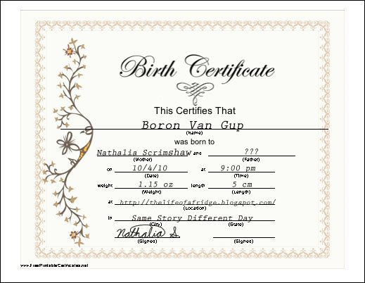 Element Birth Certificate Same Story Different Day 10 3 10 10 10 10