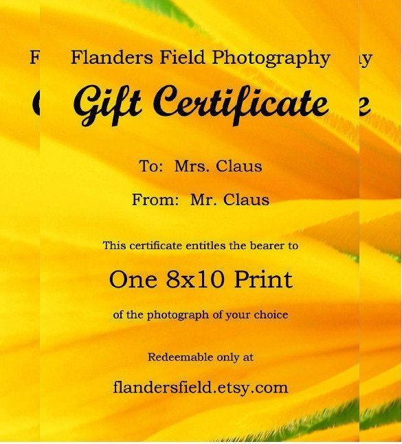 Email Gift Certificate Template 7 Email Gift Certificate Templates Free Sample Example