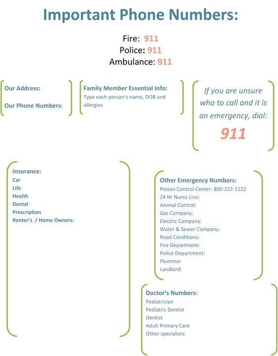 Emergency Phone Numbers Template Important Phone Numbers Template 1
