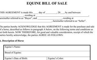 Equine Bill Of Sale Bill Of Sale Template