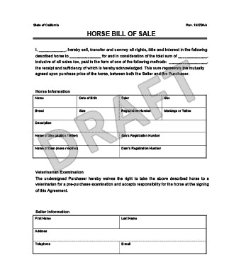 Equine Bill Of Sales Create A Horse Bill Of Sale
