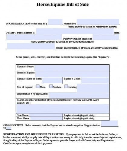 Equine Bill Of Sales Free Horse Equine Bill Of Sale form Pdf
