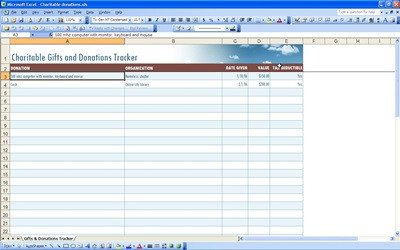 Excel Donation List Template Charitable Donation form