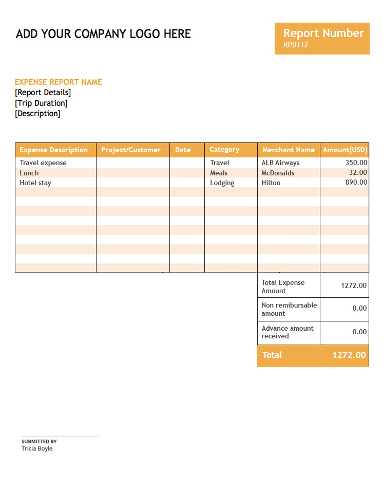 Expense Report Template Free Free Expense Report Template