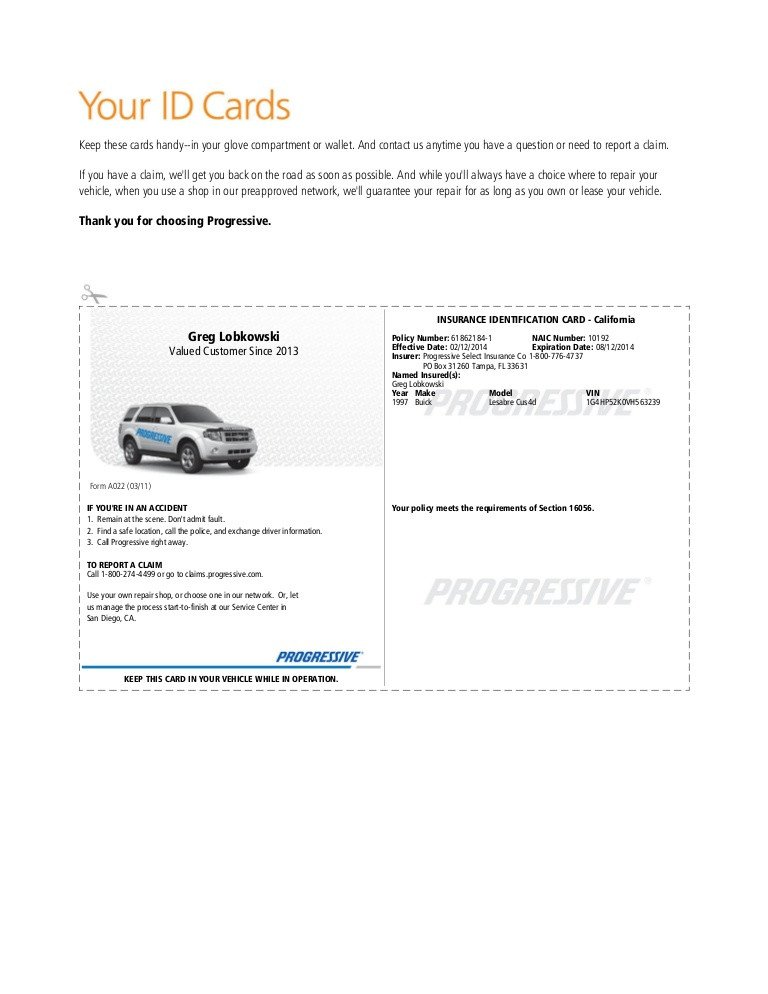 Fake Proof Of Insurance Templates Pgr Insurance Idcard 1
