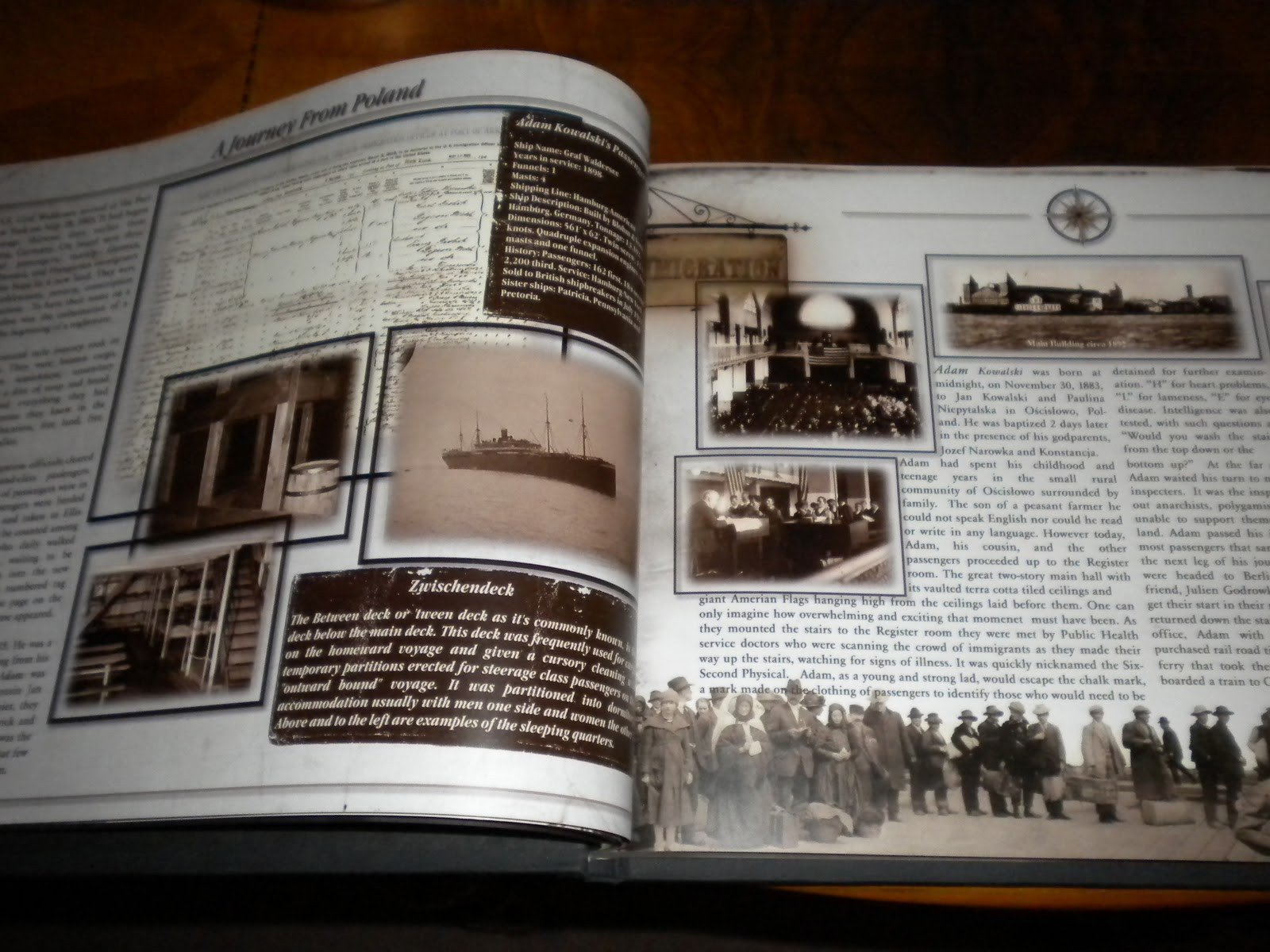 Family History Book Template Determining A Bud for Your Family History Book