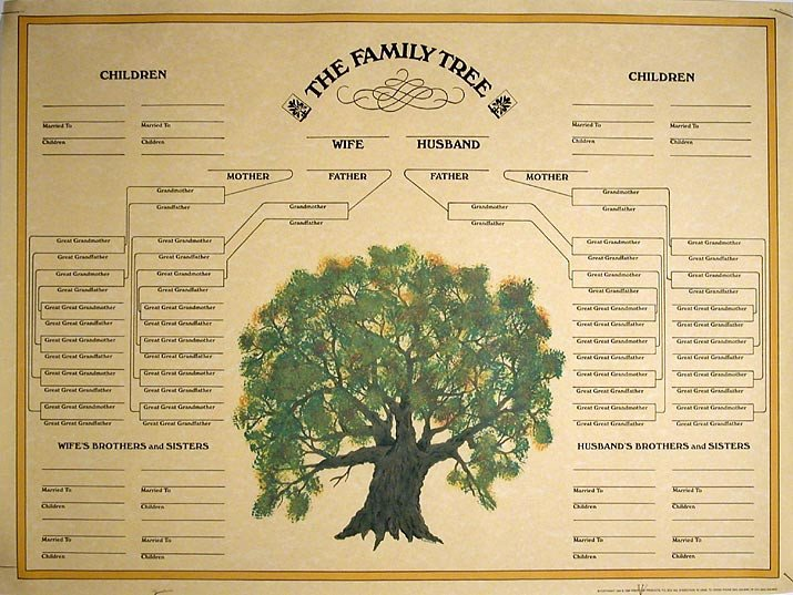 Family History Book Template Family Tree Template Blank Family Tree