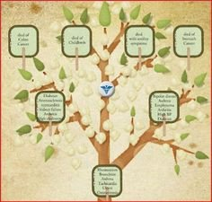 Family Medical Tree 1000 Images About Creative Genealogy On Pinterest