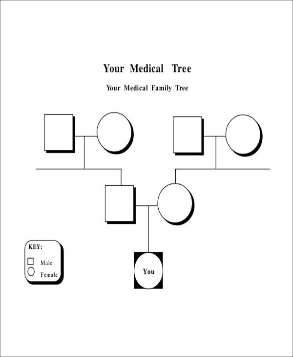 Family Medical Tree Sample Blank Family Tree 8 Examples In Word Pdf