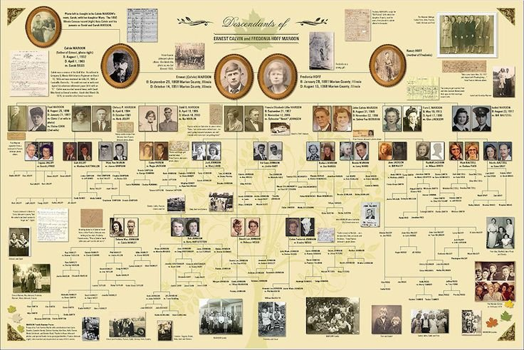 Family Tree Book Template Family Tree Presentation Feature On Ancestry