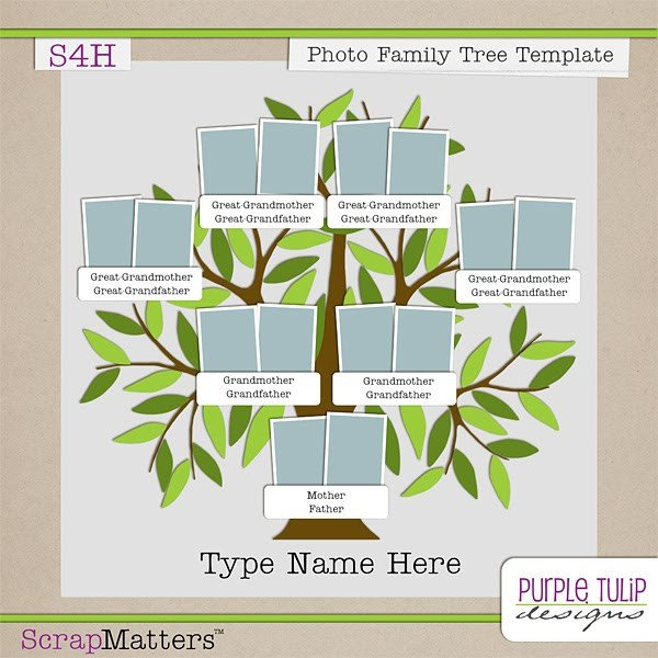 Family Tree Book Template Purple Tulip Designs Family Tree Template