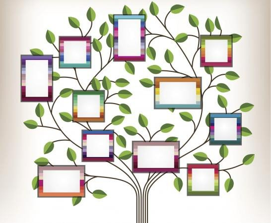 Family Tree with Pictures Template Family Tree Template for Kids