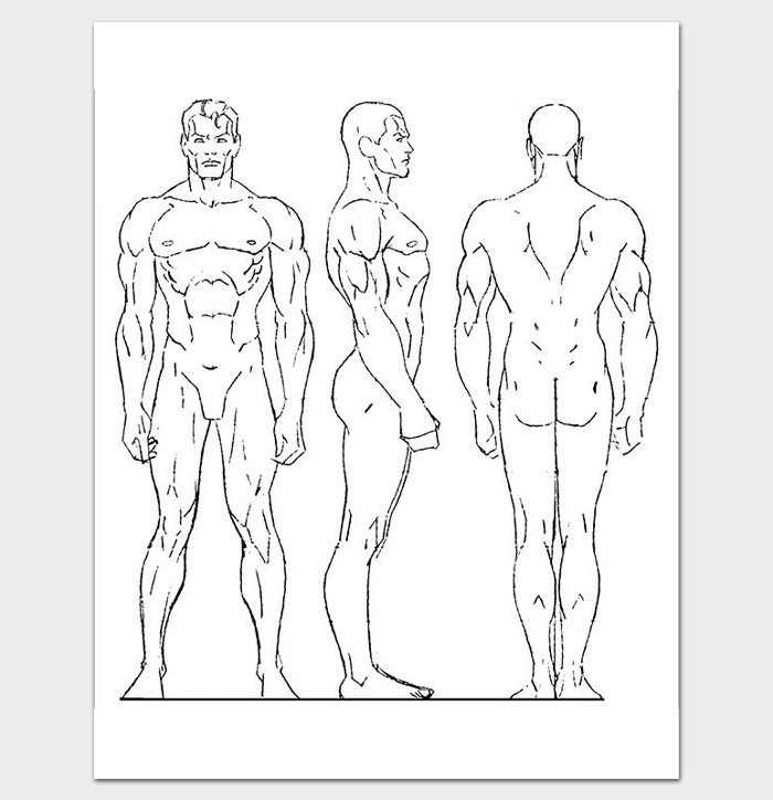 Female Body Outline Template Human Body Outline Template 32 Printable Worksheets
