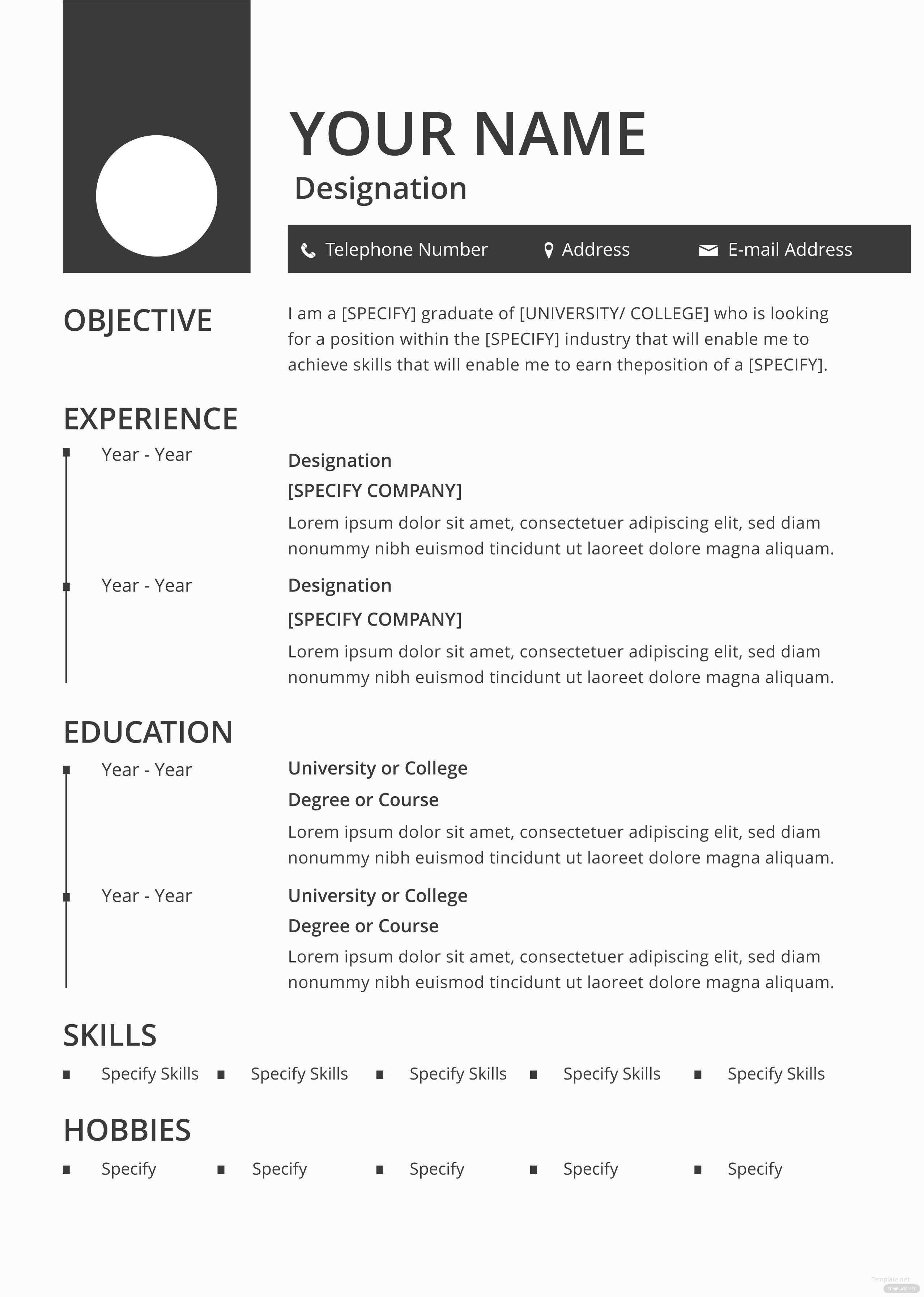 Fill In Resume Template Pdf Free Blank Resume and Cv Template In Adobe Shop