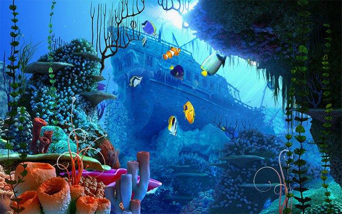 Fish Tank Background Printable 50 Best Aquarium Backgrounds