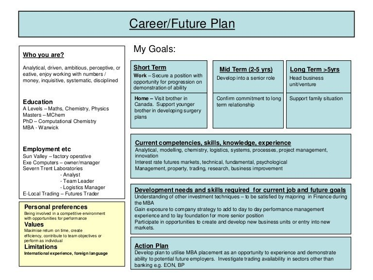 Five Year Plan Template Career Plan Example