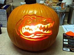 Florida Gator Pumpkin Stencil Carving Amazon Customer Reviews Ncaa Florida Gators Pumpkin