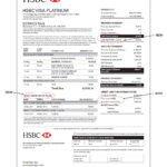 Free Bank Statement Generator Bank Statement Generator software