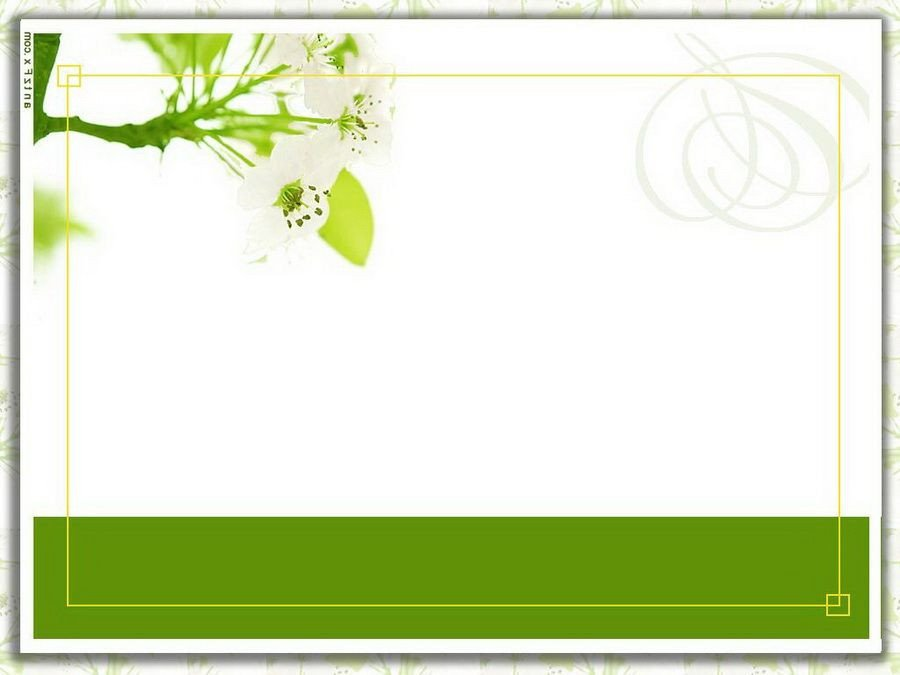 Free Blank Invitation Templates Blank Wedding Card Designs Wedding Gallery
