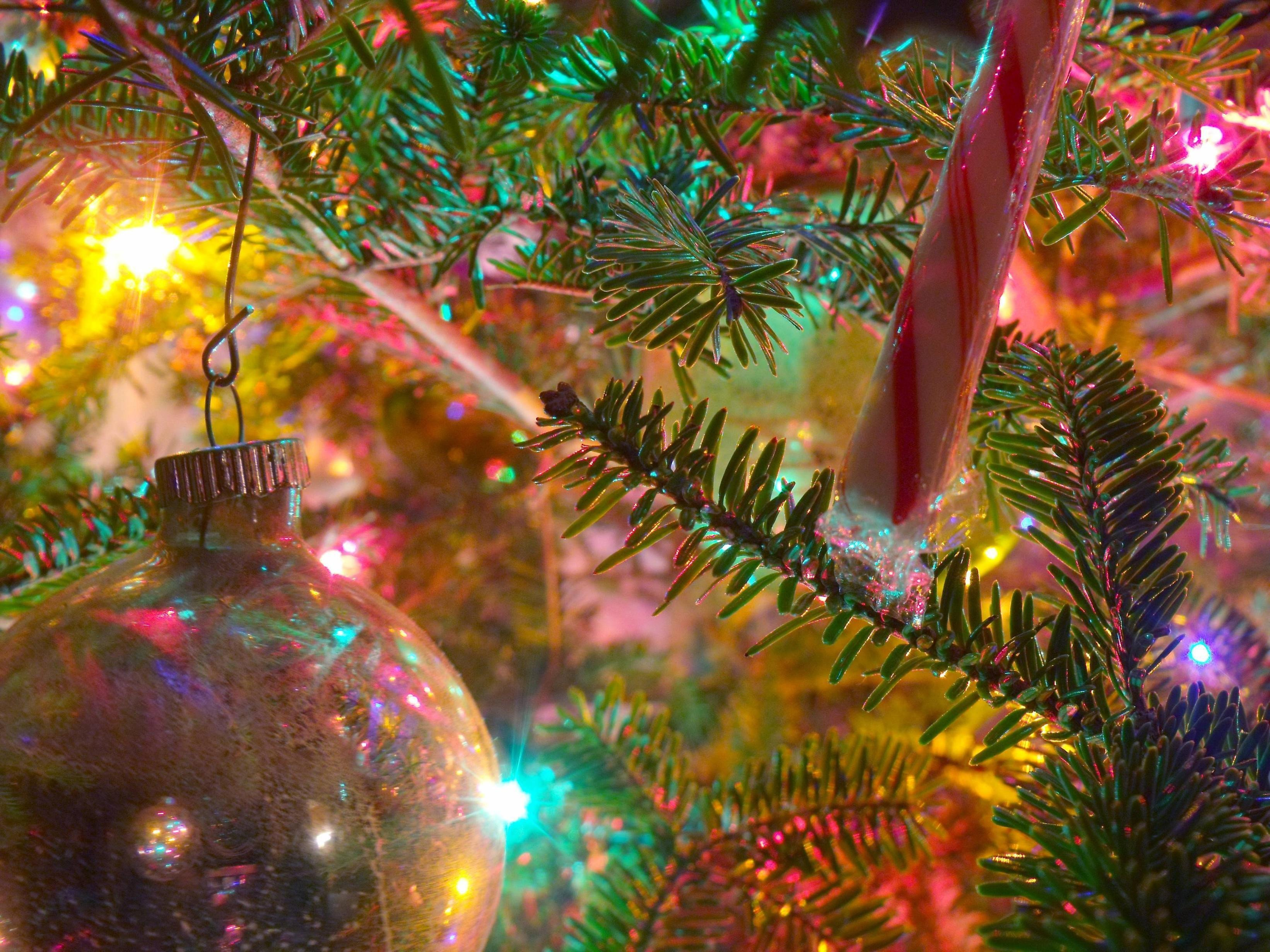 Free Christmas Desktop Wallpaper Christmas Wallpapers for Puter Desktop Wallpaper Cave