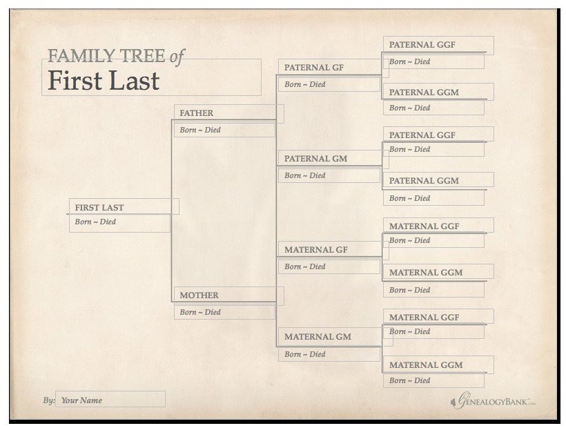 Free Editable Family Tree Template Family Tree Template & How to Get Started