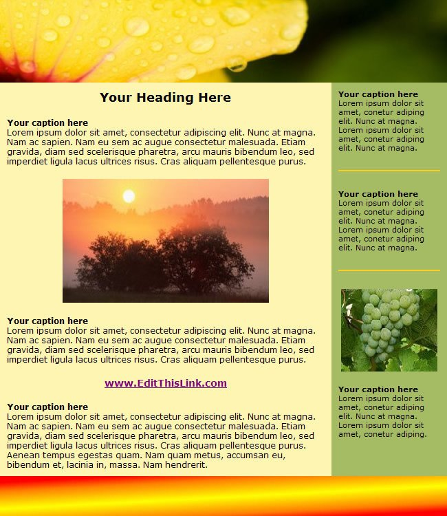 Free Newsletter Templates Download top 10 Free HTML Newsletter Templates something for Everyone