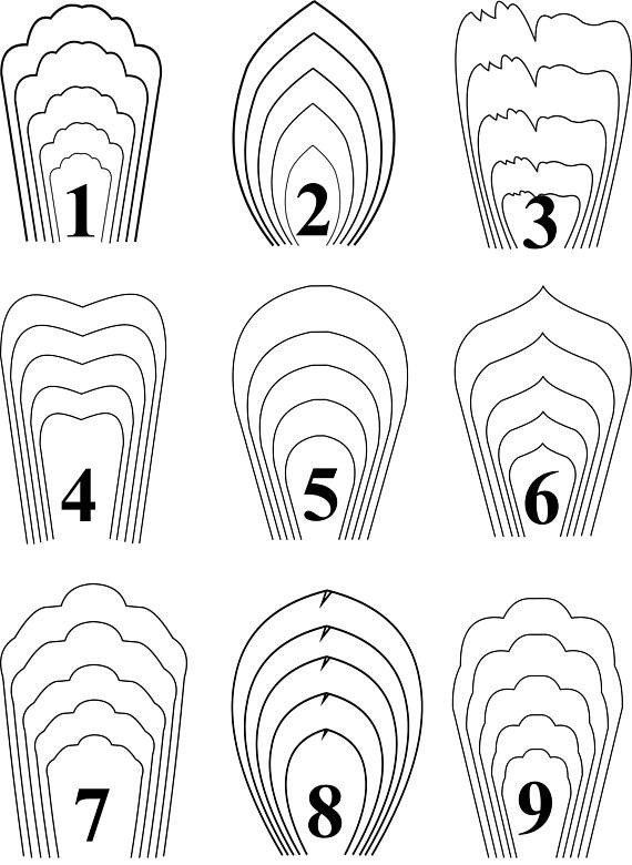 Free Paper Flower Templates All18pdf Templates Giant Paper Flower Template Flower