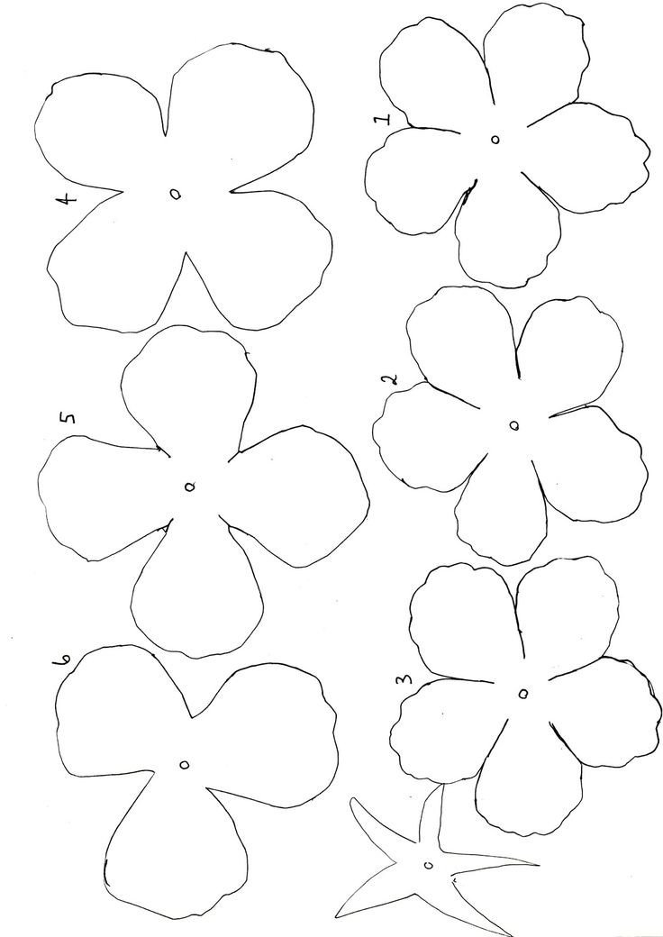 Free Paper Flower Templates Diy Crafting Flowers