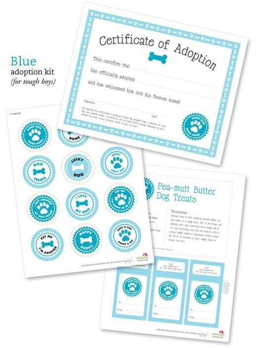 Free Printable Adoption Papers Best 25 Adoption Certificate Ideas On Pinterest