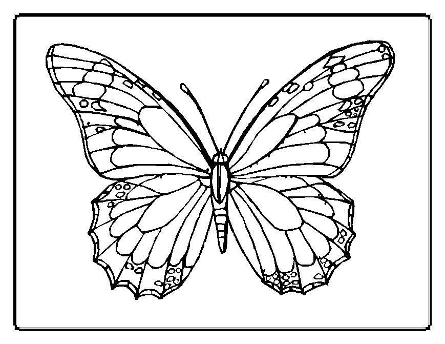 Free Printable butterfly Template Printable butterfly Template Az Coloring Pages