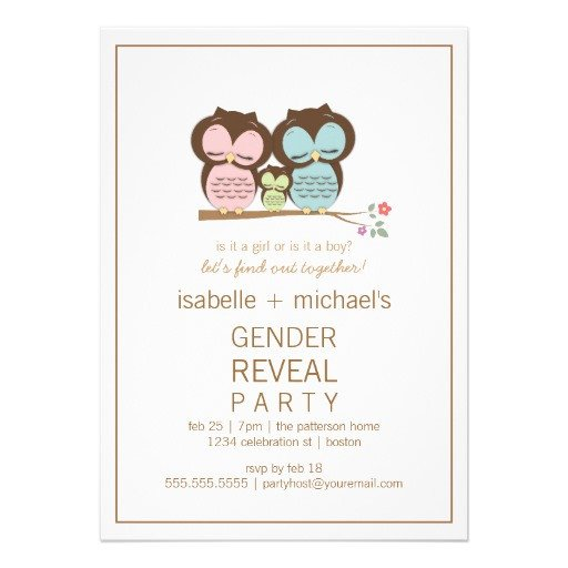Gender Reveal Invitation Wording Cute Owl Couple Gender Reveal Party Invitation