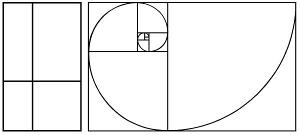 Golden Ratio Design Template Golden Ratio Shapes Shop Secrets
