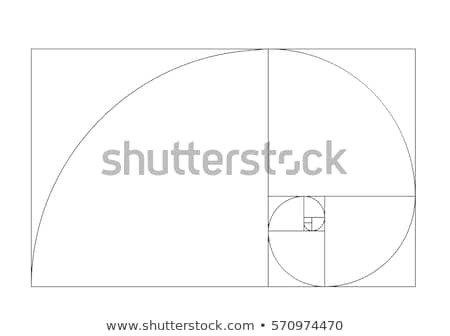 Golden Ratio Design Template Golden Stock Royalty Free & Vectors