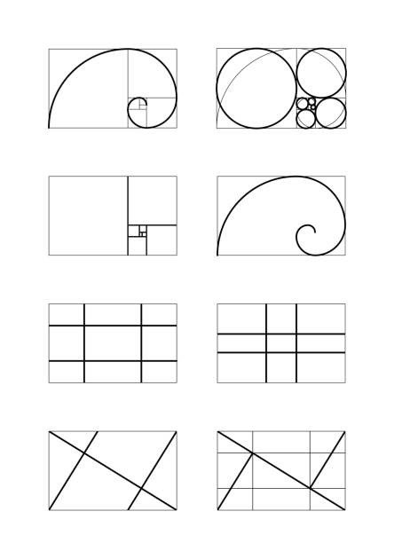 Golden Ratio Design Template top 60 Golden Ratio Clip Art Vector Graphics and