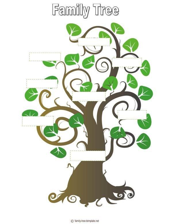 Google Family Tree Template Family Tree Template Genealogy