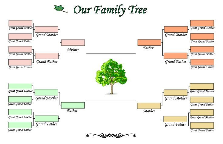 Google Family Tree Template Genogram Examples Google Search Early Ed