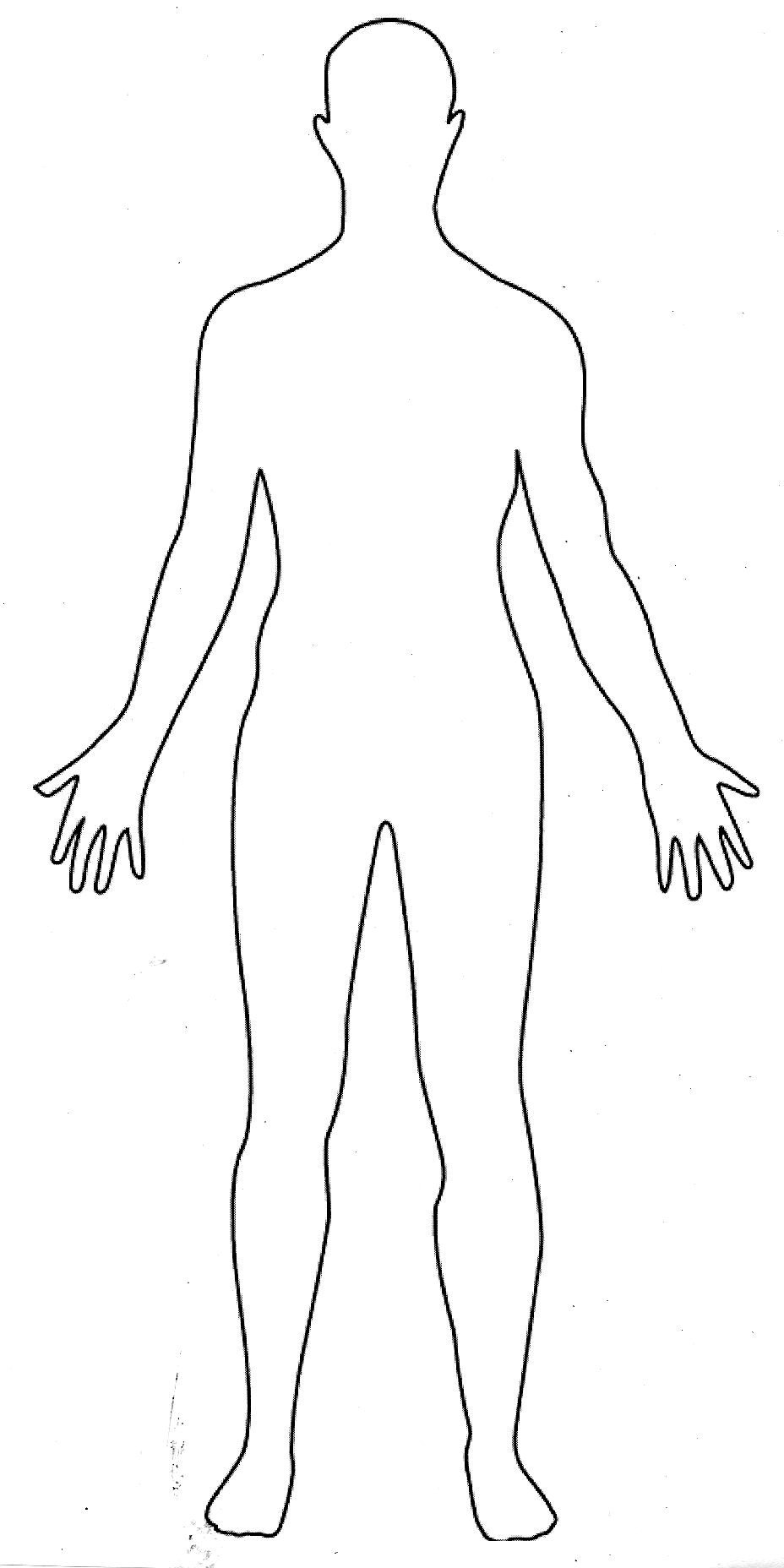 Human Body Outline Drawing Human Body 1
