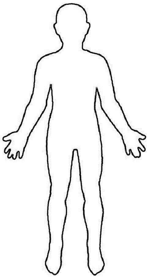 Human Body Outline Drawing Human Body Outline